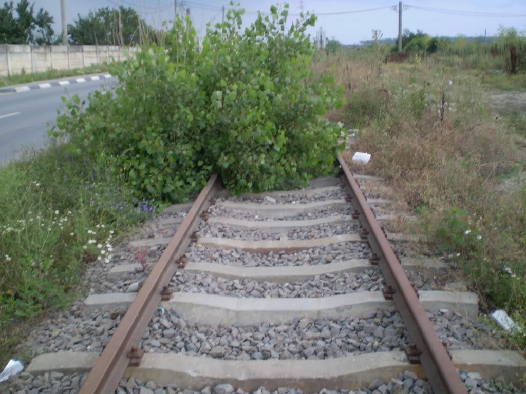 Liniile ferate industriale din Giurgiu P6280210