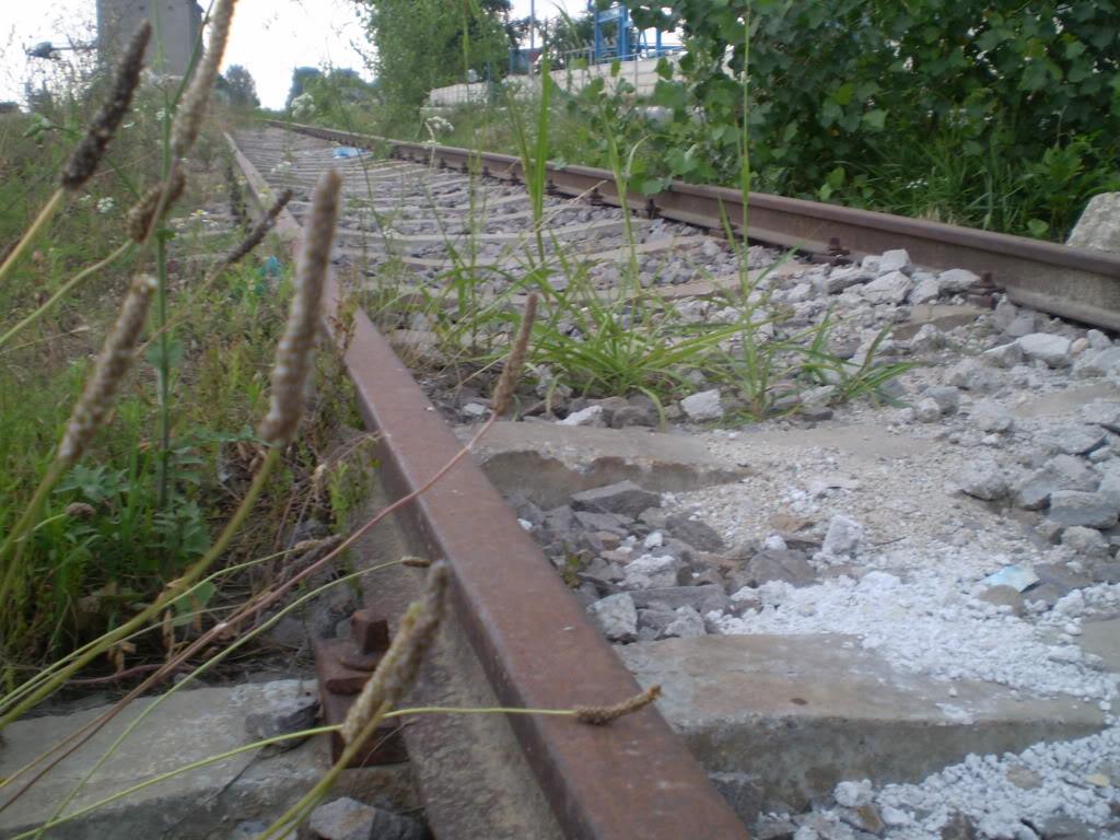 Liniile ferate industriale din Giurgiu P6280212