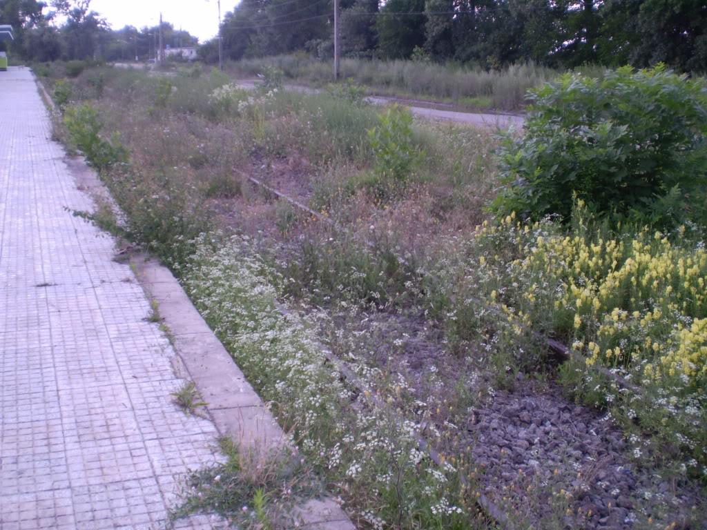 Liniile ferate industriale din Giurgiu P6280219