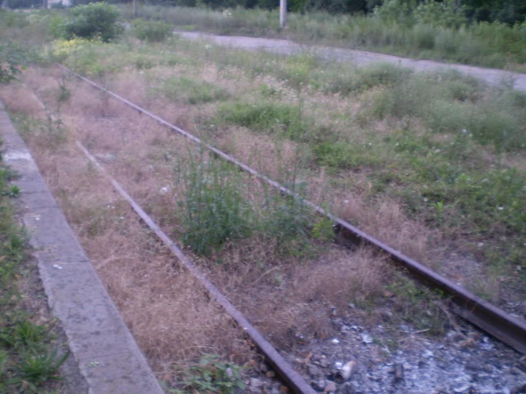 Liniile ferate industriale din Giurgiu P6280221