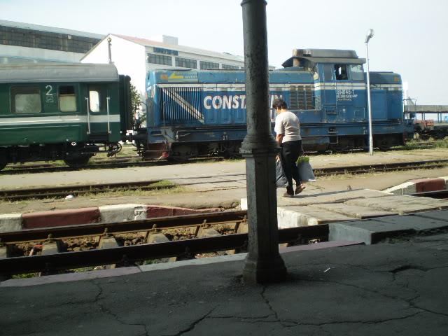 907 : Rosiori Nord - Costesti - Pagina 2 P9290028