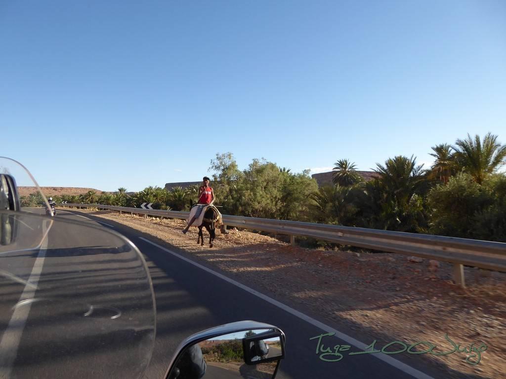 photo Marrocos 780_zpszwnoxmlp.jpg
