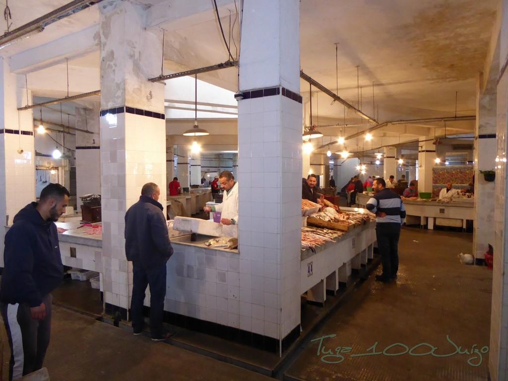 marrocos - De Maxiscooter por Marrocos Marrocos%2064_zpsmoqbettp