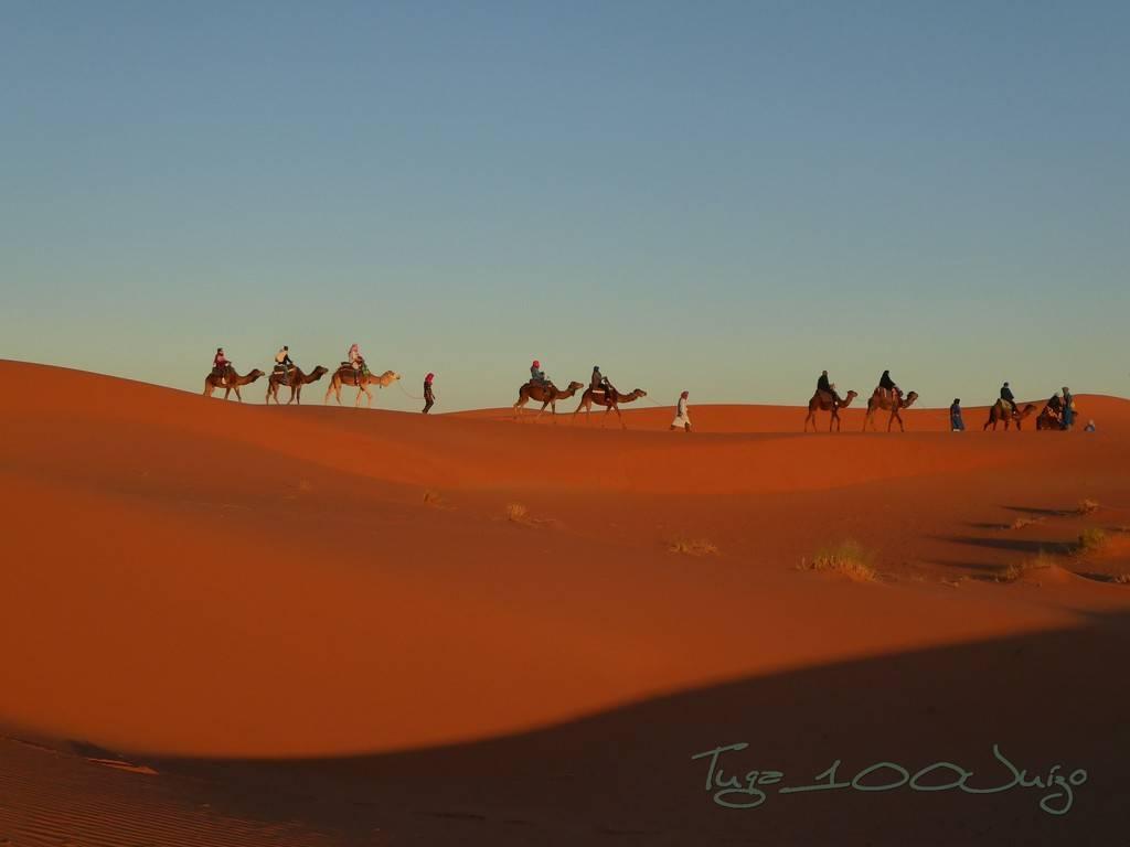 photo Marrocos 1011_zpskkphrdpz.jpg