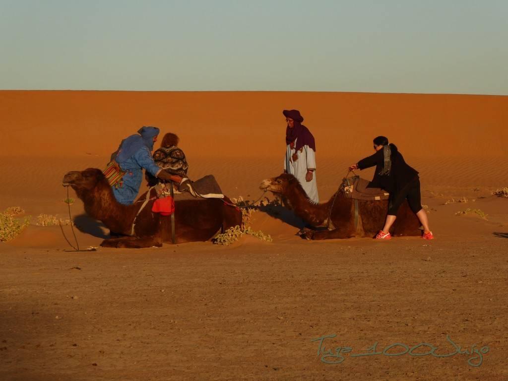 photo Marrocos 1022_zps6yneyzrb.jpg