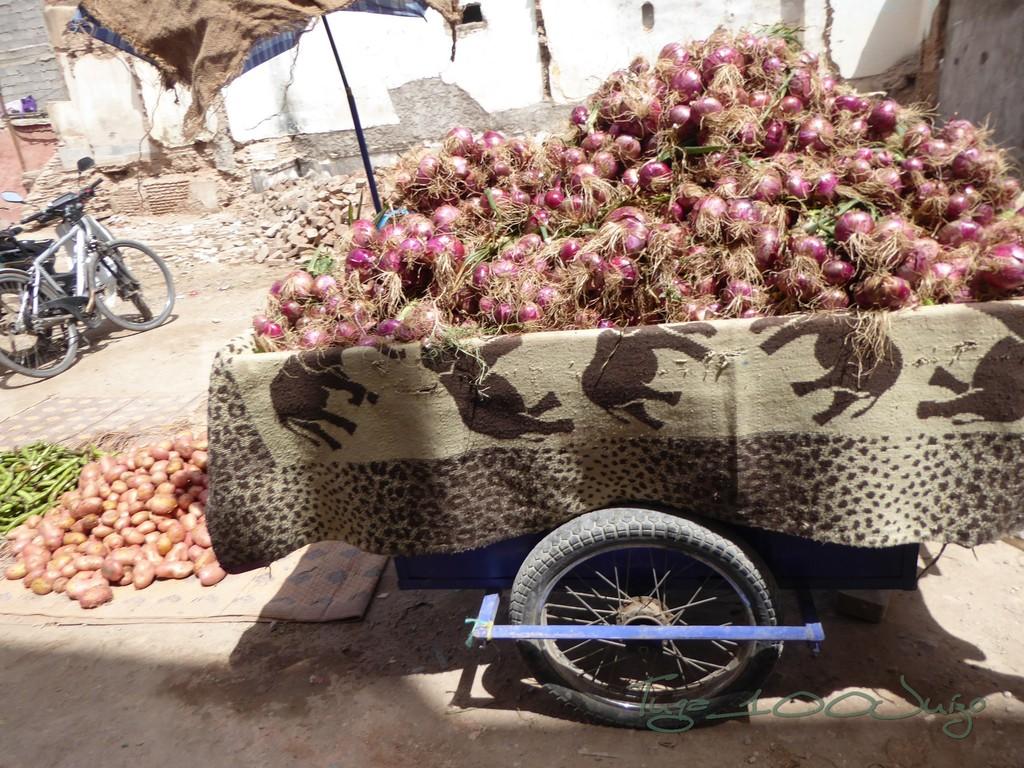 photo Marrocos 1847_zpsomsjnbtk.jpg