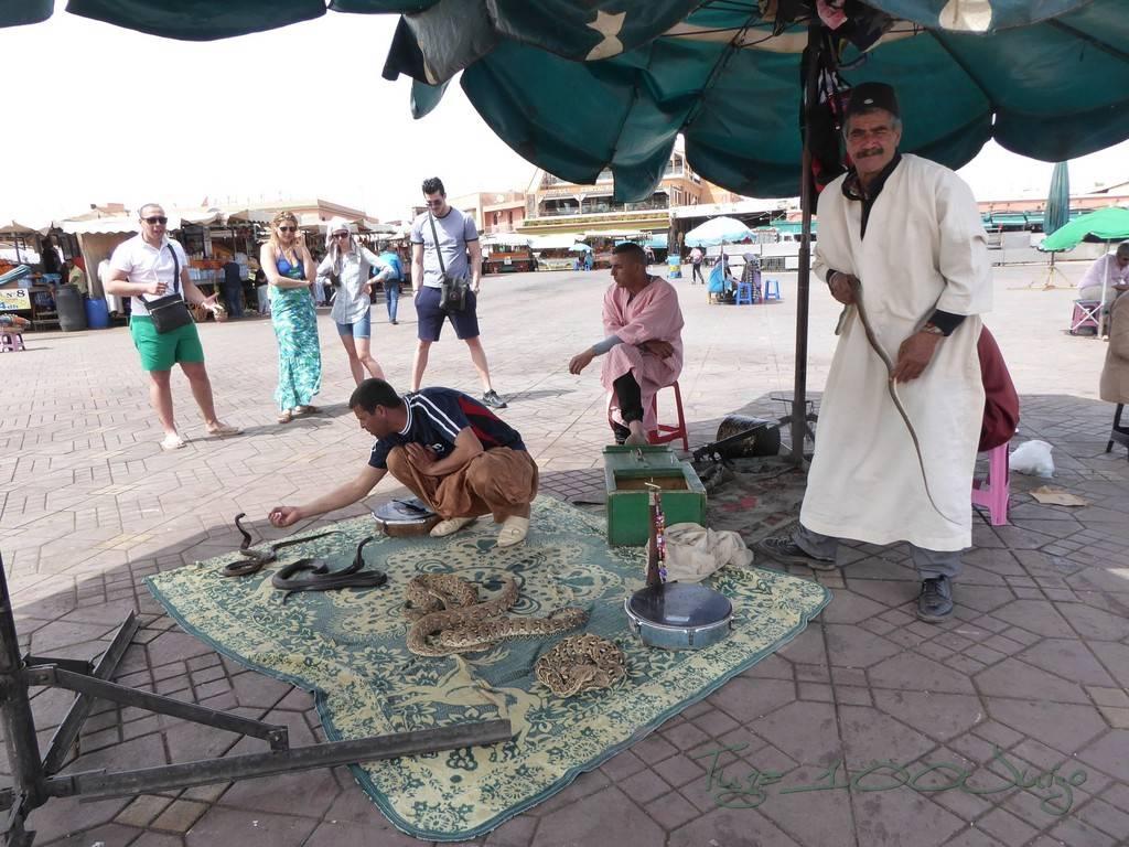 photo Marrocos 2069_zpsildgvz4y.jpg