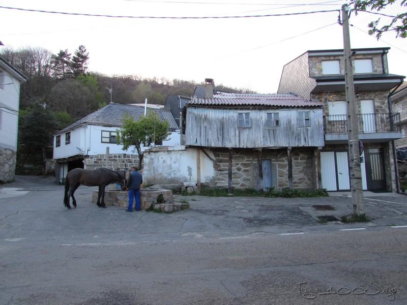 Picos - Sanabria e Picos da Europa - mais um passeio de sonho - Página 2 MonsantoSanabriaePicosdaEuropa2014303_zps7e5cd4f3