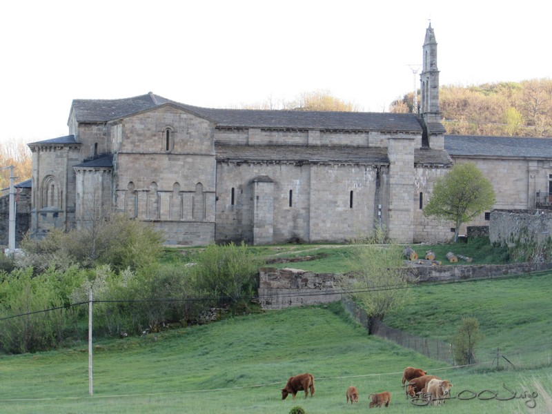 Picos - Sanabria e Picos da Europa - mais um passeio de sonho - Página 2 MonsantoSanabriaePicosdaEuropa2014313_zps3e0efe74