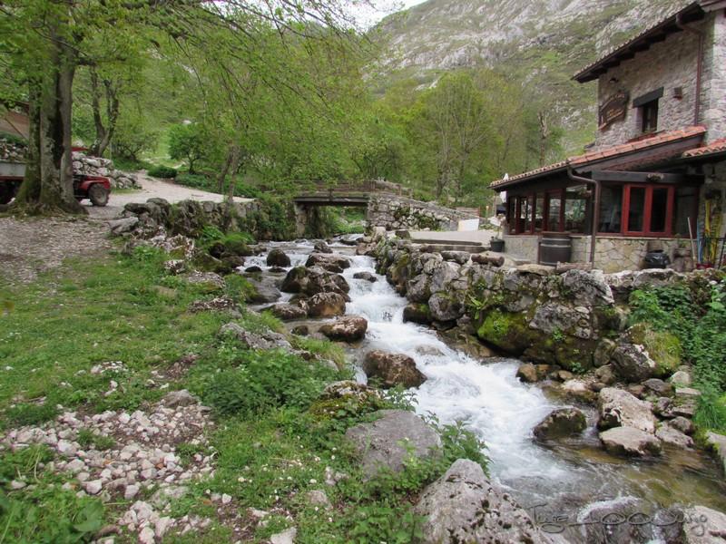 Europa - Sanabria e Picos da Europa - mais um passeio de sonho - Página 3 MonsantoSanabriaePicosdaEuropa2014745_zps9731a44f