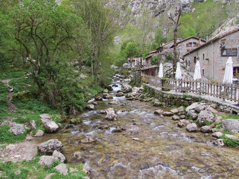 Europa - Sanabria e Picos da Europa - mais um passeio de sonho - Página 3 MonsantoSanabriaePicosdaEuropa2014755_zpsf821384f