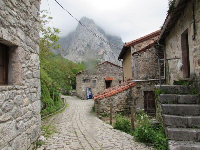 Europa - Sanabria e Picos da Europa - mais um passeio de sonho - Página 3 MonsantoSanabriaePicosdaEuropa2014759_zpsf8eaa028
