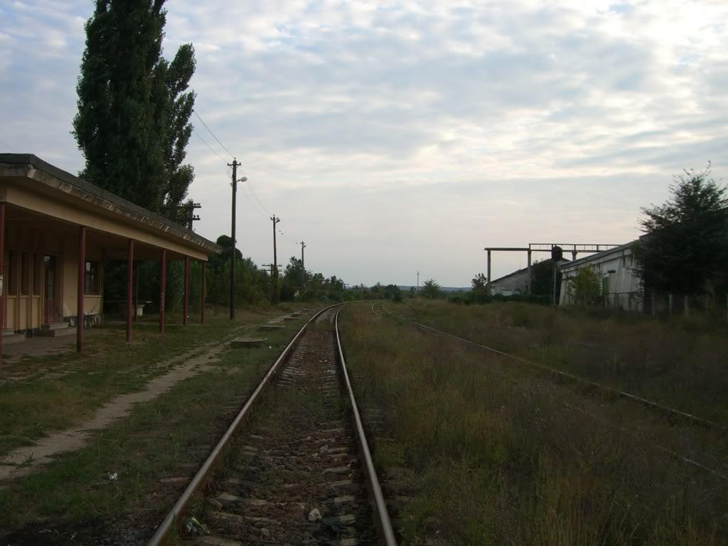 902 : Bucuresti Progresu - Giurgiu Nord - Giurgiu CIMG4544