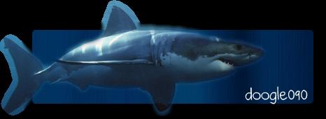 Tosca's Renders. Shark3