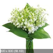 Поздравляем с Днем Рождения Татьяну (татьяна123) 17c528e9c172d4d4f9384f0ecb328b79