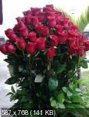 Поздравляем с Днем Рождения Елену (celena28) 911240c5f8e33f017042983fa98392b8