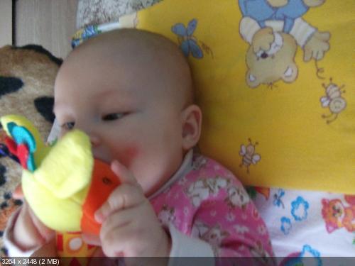 """Фотоконкурс """"Моя любимая игрушка"""" _61168400cd16d5d09b9f268806aa5df5"""