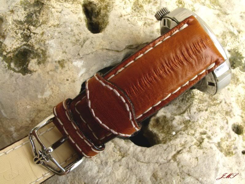 Connaissez vous la peau d'anguille ? IMG_1419
