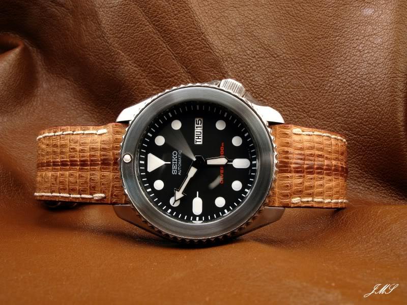 du cuir sur une Diver?.. IMG_5683