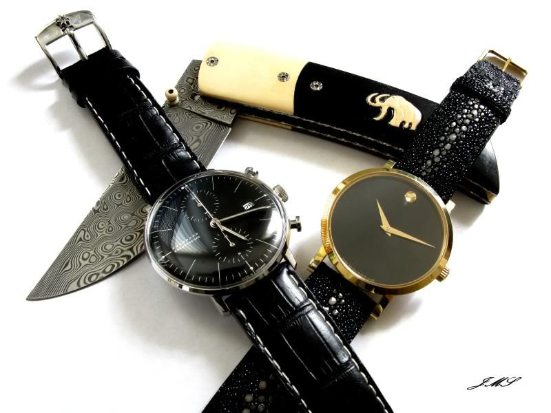 Feu de vos montres épurées !!! IMG_6345-1
