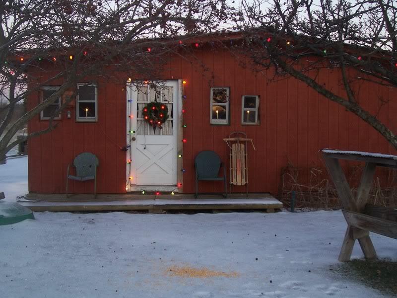 Christmas Decorations! 100_3522