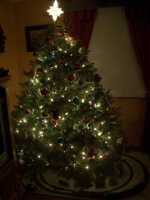 Christmas Decorations! 100_3528