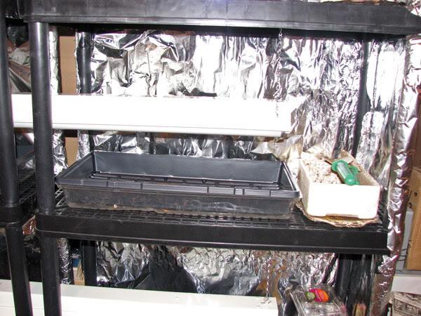 Tout ce que ça prends pour des semis intérieurs 6janvier2008004