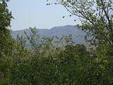 Butrint/Saranda, August 2007 Th_ImportedPhotos00489