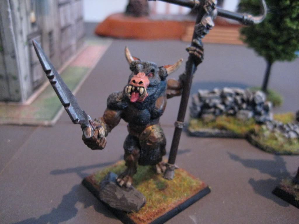 beastmen - doctorMB's beastmen and adventurers IMG_3280