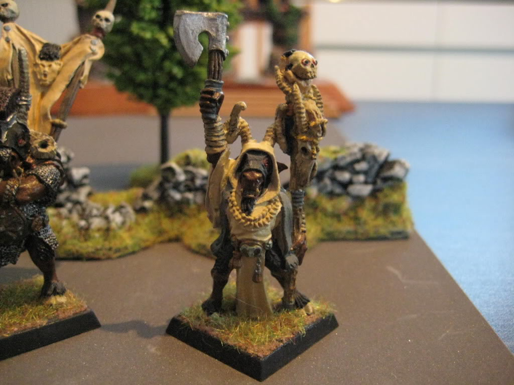 beastmen - doctorMB's beastmen and adventurers IMG_3281