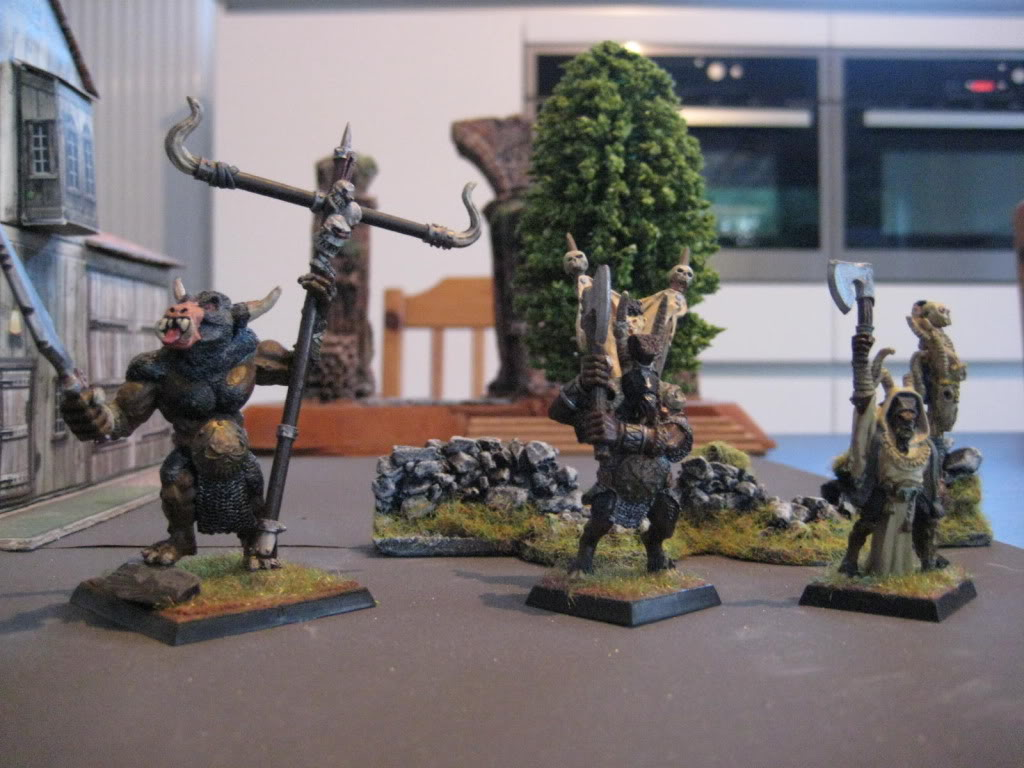 beastmen - doctorMB's beastmen and adventurers IMG_3282