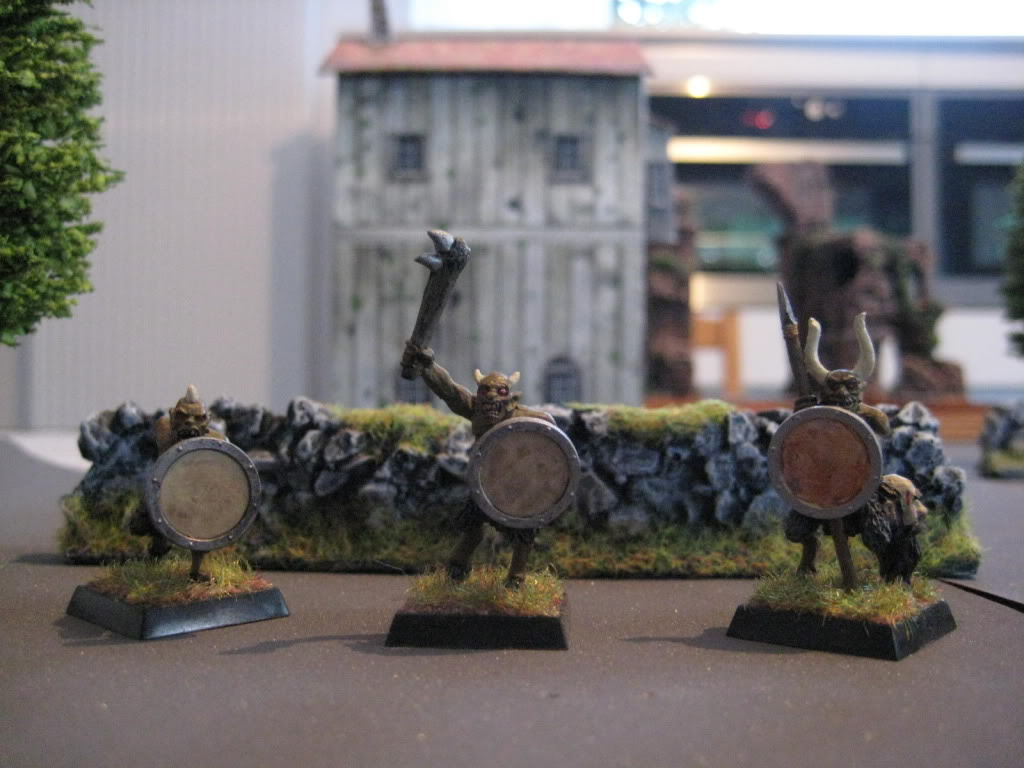 beastmen - doctorMB's beastmen and adventurers IMG_3286