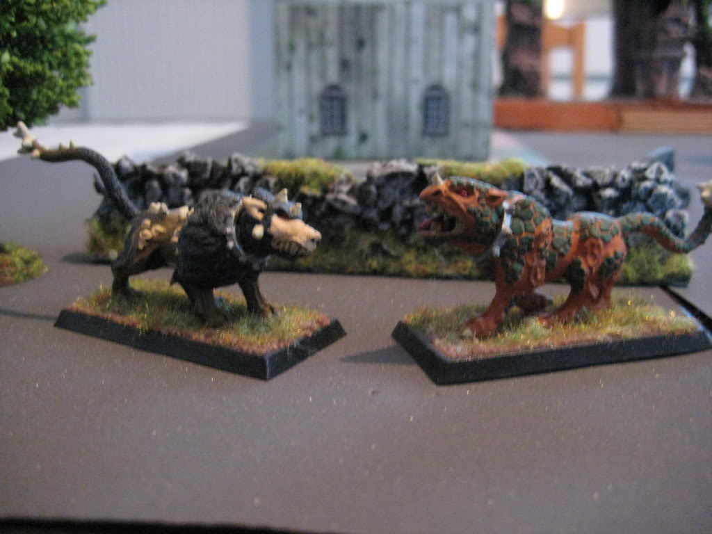 beastmen - doctorMB's beastmen and adventurers IMG_3287