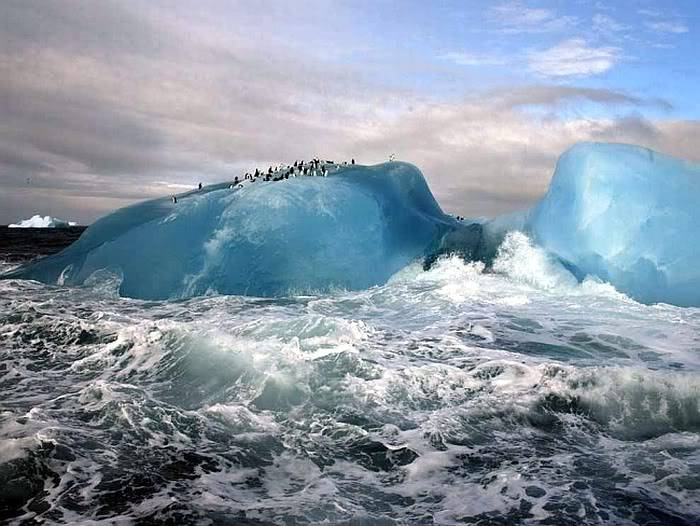Post your favorite pics friends (any pics ). Blue-iceberg_10489_990x742