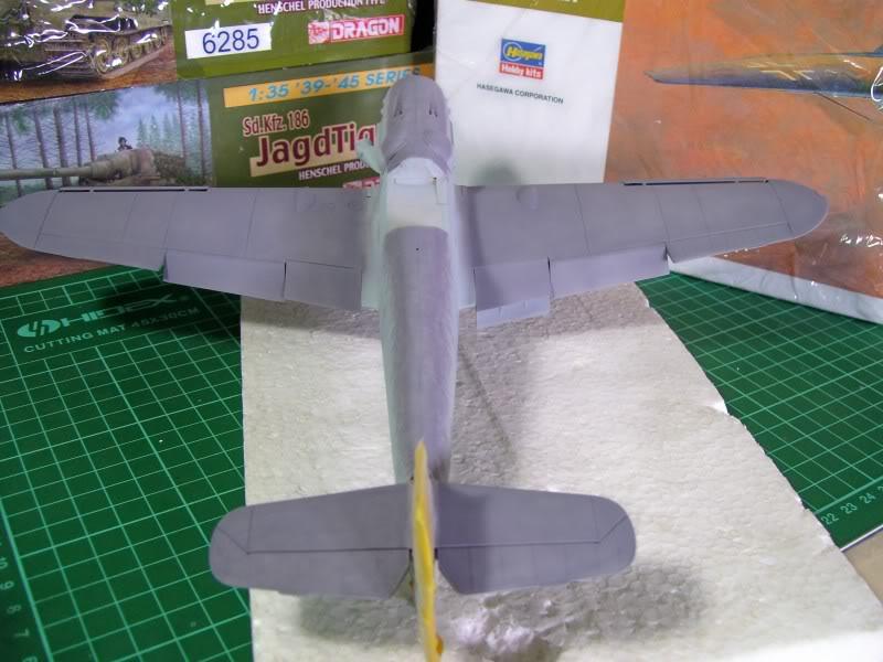 Messerschmitt Bf 109 G-6 Hasegawa 1/32 Alfred Grislawski - Página 2 AplicacaciondecamuRLM756
