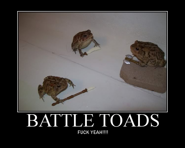 Funny / Memes / Any kind of pictures you feel like posting  Battletoads