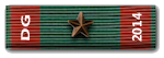 Poland is our Kameraden. - Página 2 DG_2014_ribbon_zpsdf655eaa