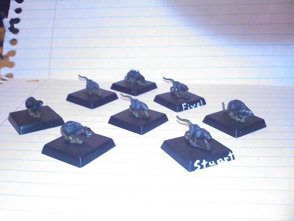 Completed warband 0209000032