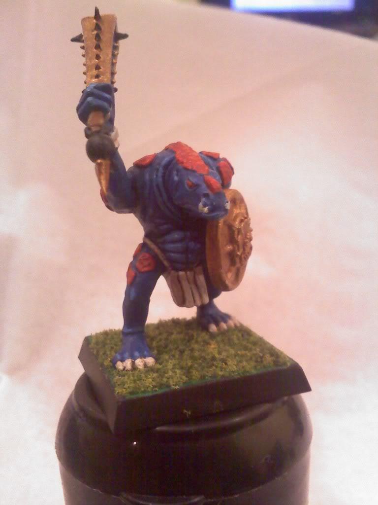 my new Lizardmen warband 0502000104
