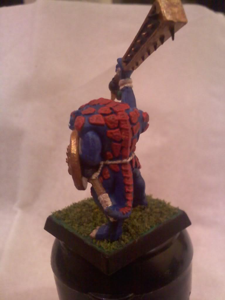 my new Lizardmen warband 0502000105