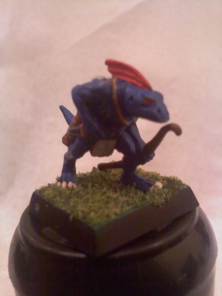 my new Lizardmen warband 0502000105a