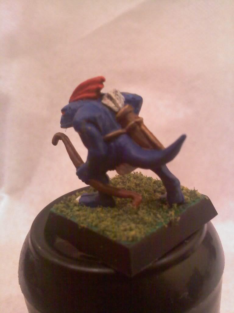 my new Lizardmen warband 0502000105b