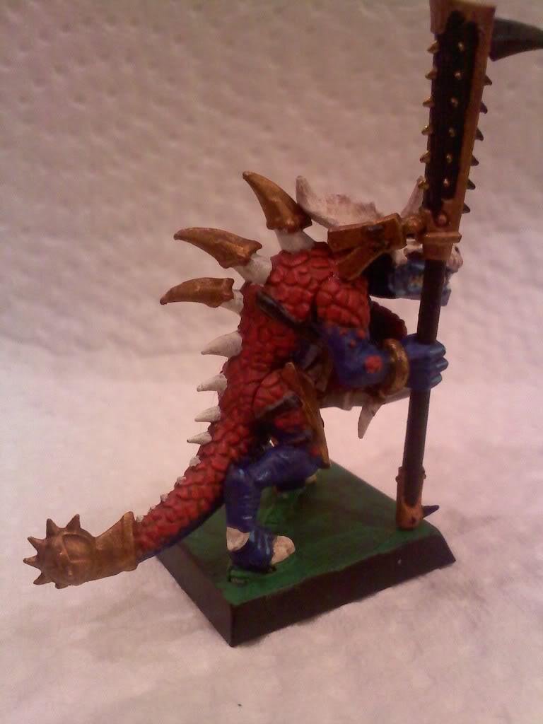 my new Lizardmen warband 0505002004