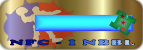 Baner nuevos (pal que quiera) NbblNPRIMERTAM12-DUOTONAZULOSC-3