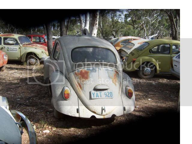 67' Super mint OG ozzy bug GetAttachment1