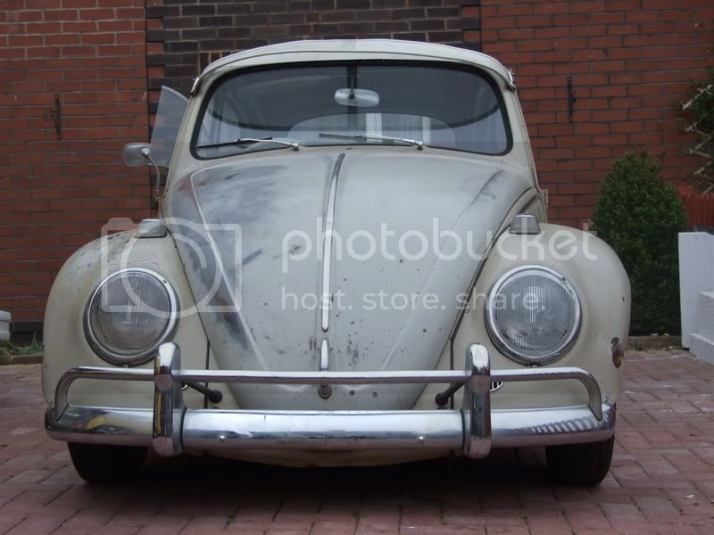 67' Super mint OG ozzy bug Picture042