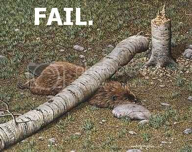 Epic fails! Fail