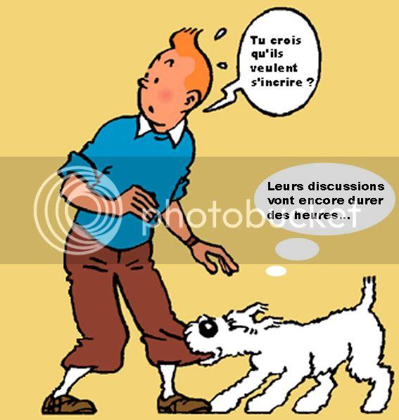Aux nouveaux inscrits Tintin02etmilou
