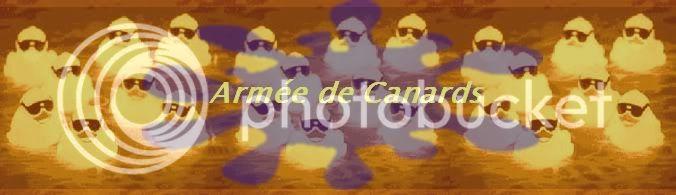 Armée de canards Baniere