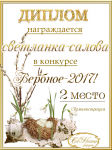 """Поздравляем победителей """"Фабрика мастеров""""2017. """"Чайная церемония""""! 89fd237fc7512e2ee141e54753050b16"""